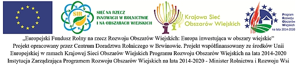 II FWiI logotyp