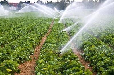 Racjonalne gospodarowanie wodą w gospodarstwie rolnym