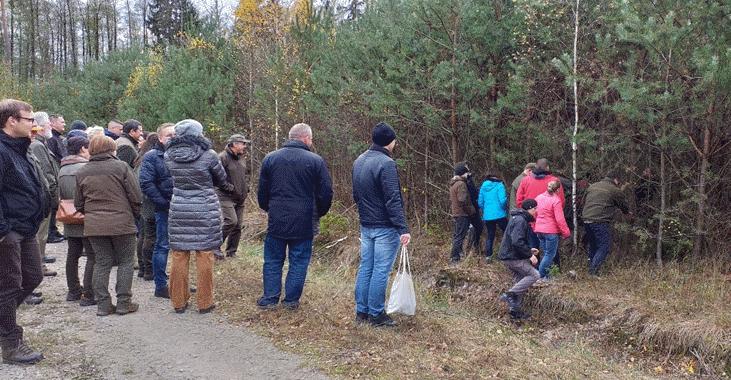 Realizacja działań leśnych PROW 2014-2020 w szczególności w zakresie nowego poddziałania leśnego