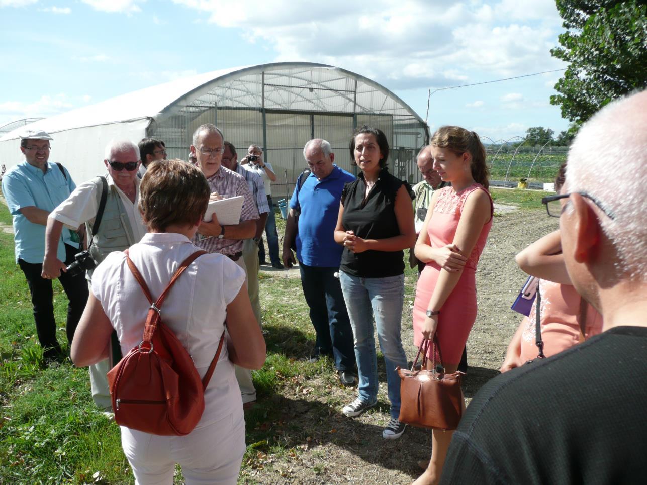 Pola CRPV Badawczego Centrum Produkcji Rolnej w Cesenie