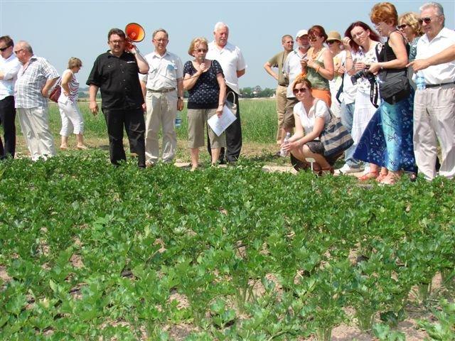 Jak ożywić system glebowy i chronić środowisko - konferencja